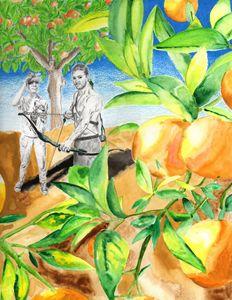 Shooting Oranges