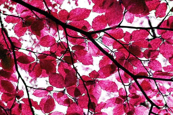 Leafs en Rose - Art by Isabelle Hodge