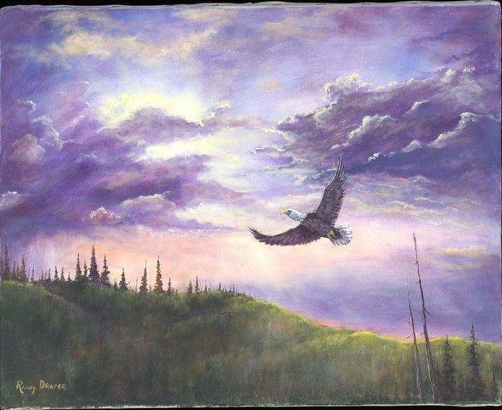 Soaring - Randy Draper
