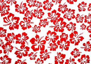 Painted red hibiscus. - Zebrito Art