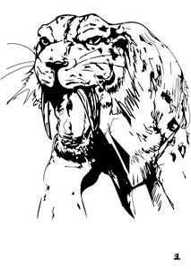 Smilodon, saber tooth - Zebrito Art
