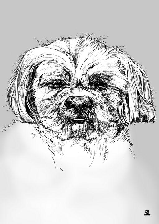 Pekingese dog - Zebrito Art