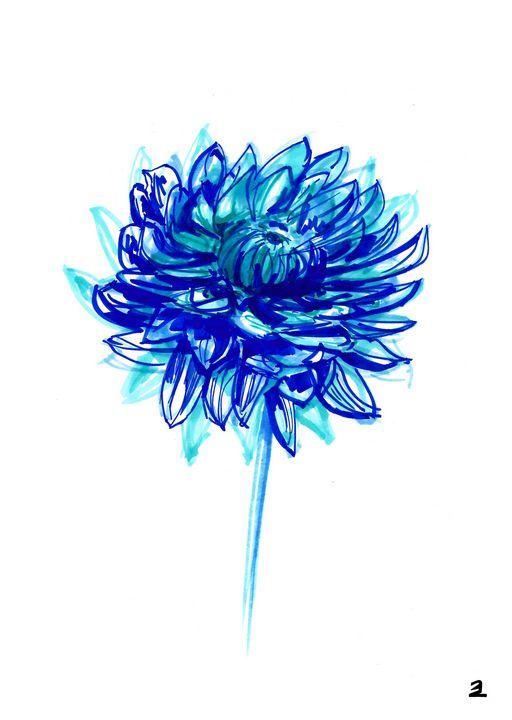 Chrisanthemum flower. - Zebrito Art
