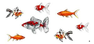 Goldfish stroll - Zebrito Art
