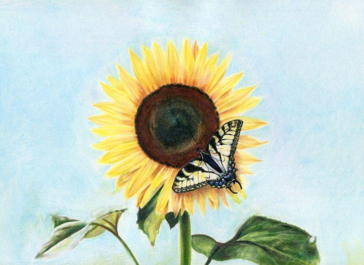 Sunflower with Swallowtail - Pen's Pix