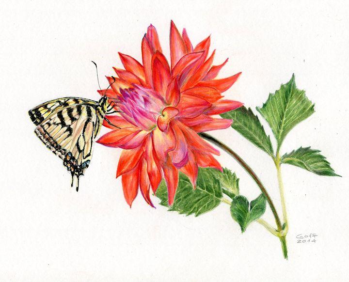 Coral Dahlia Entertains Swallowtail - Pen's Pix