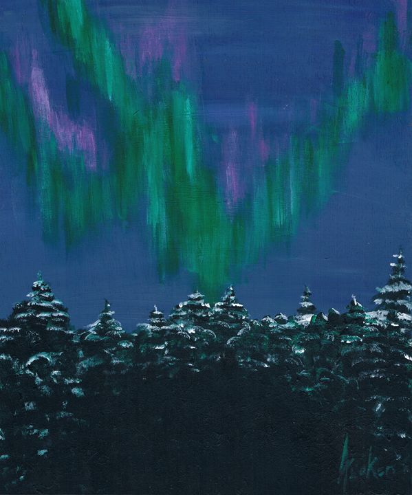 Northern Lights Canadian Arctic - ATuckerDesigns