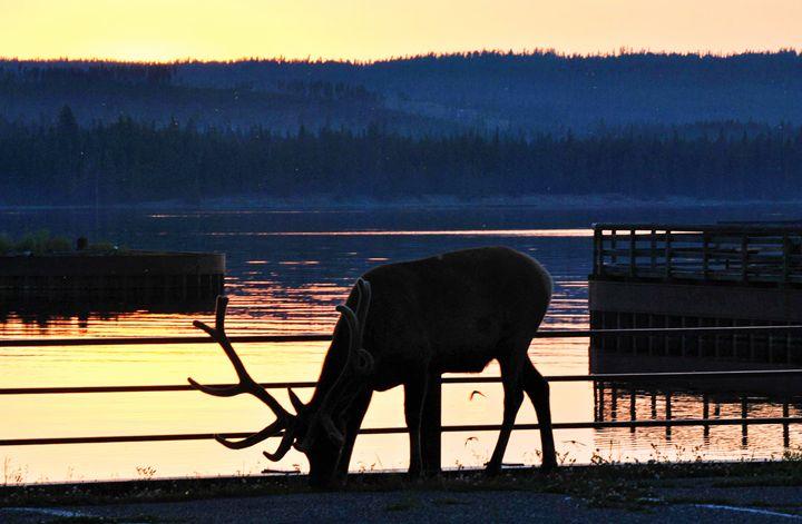 Dinner By The Lake - Mistyck Moon's Turmoil Of The Mind