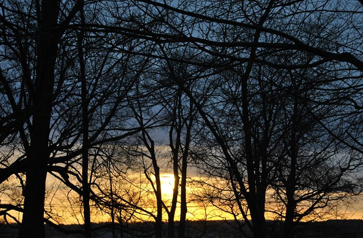 Sunrise Through The Trees - Mistyck Moon Creations Gallery