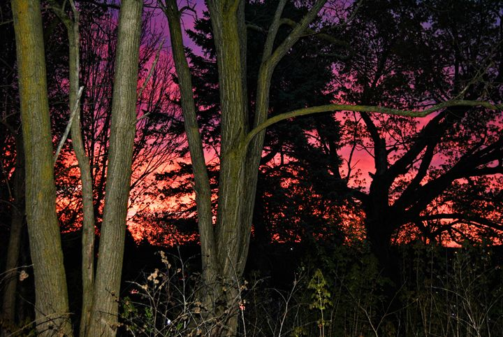 Firey Sunrise - Mistyck Moon Creations Gallery