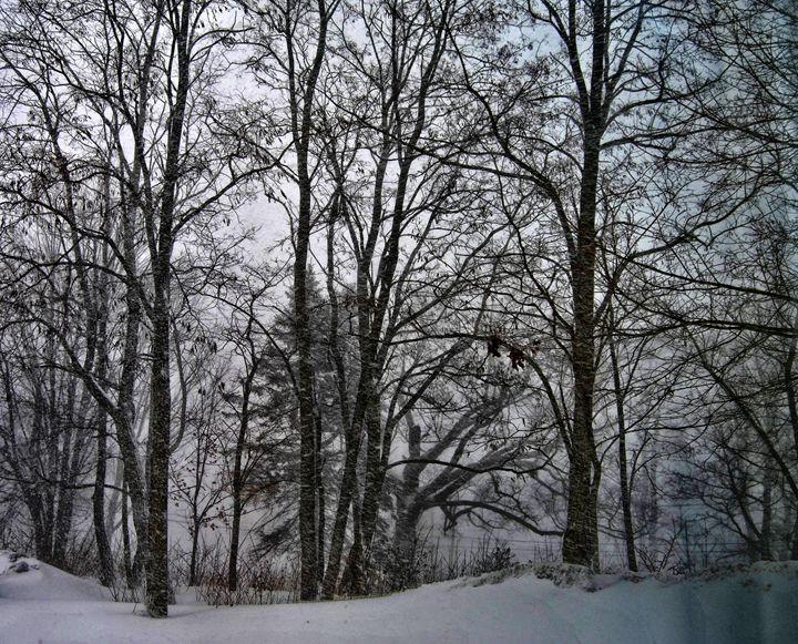 Winter in Maine - Mistyck Moon Creations Gallery
