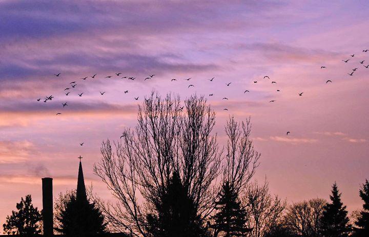 Lavender Skies - Mistyck Moon's Turmoil Of The Mind