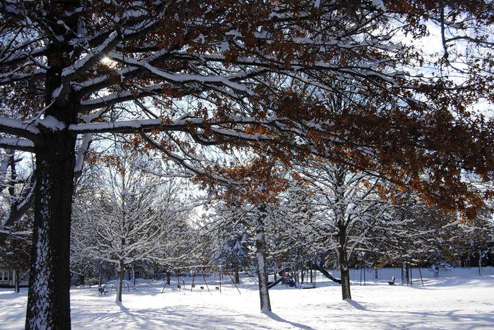 7 Winter In Bangor ME 2017 - Mistyck Moon's Turmoil Of The Mind
