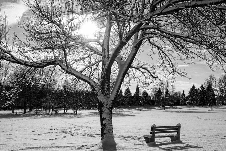 Winter In The Park - Mistyck Moon's Turmoil Of The Mind