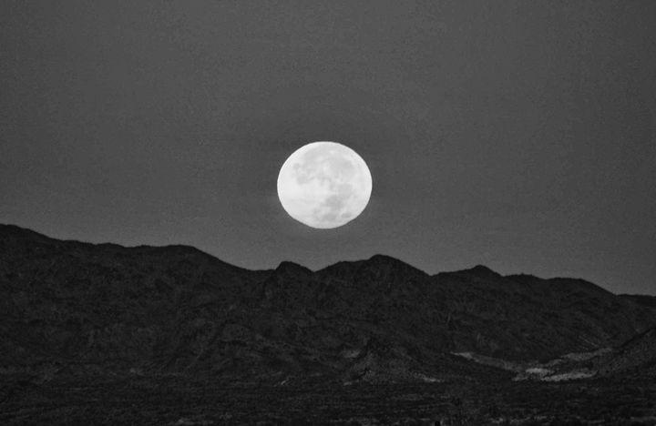 Desert Moon - Mistyck Moon's Turmoil Of The Mind