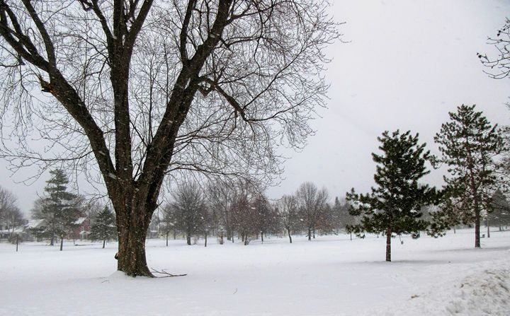 Snow Day - Mistyck Moon's Turmoil Of The Mind