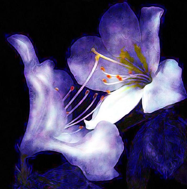Iris Of Moonlight - Mistyck Moon's Turmoil Of The Mind