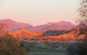 Desert Mountains At Sunset