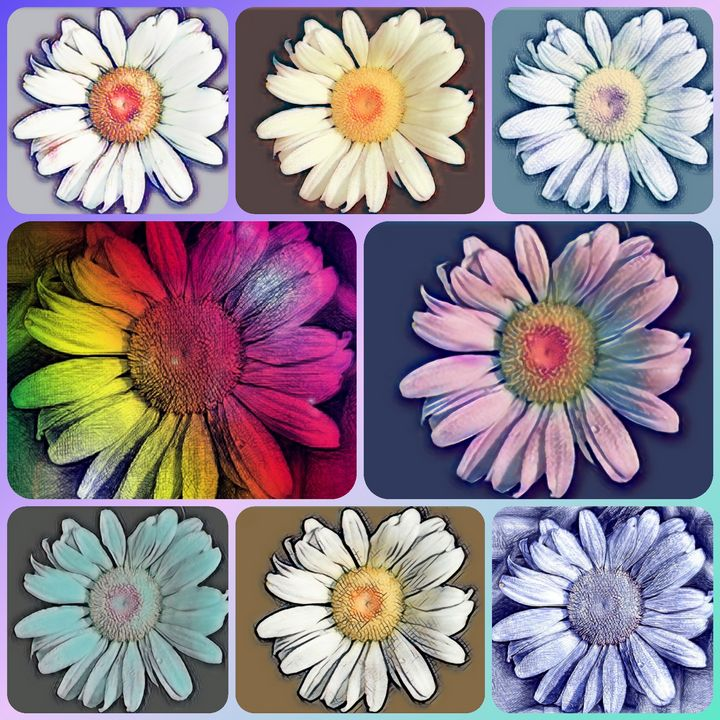 Many Faces Of One Flower - Mistyck Moon's Turmoil Of The Mind