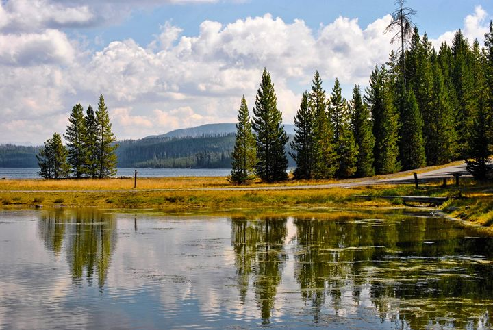 Yellowstone Landscape - Mistyck Moon's Turmoil Of The Mind