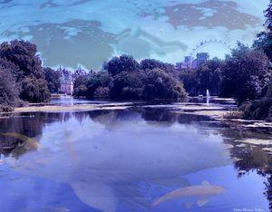 Masterpeice 2:  WaterFish Lake