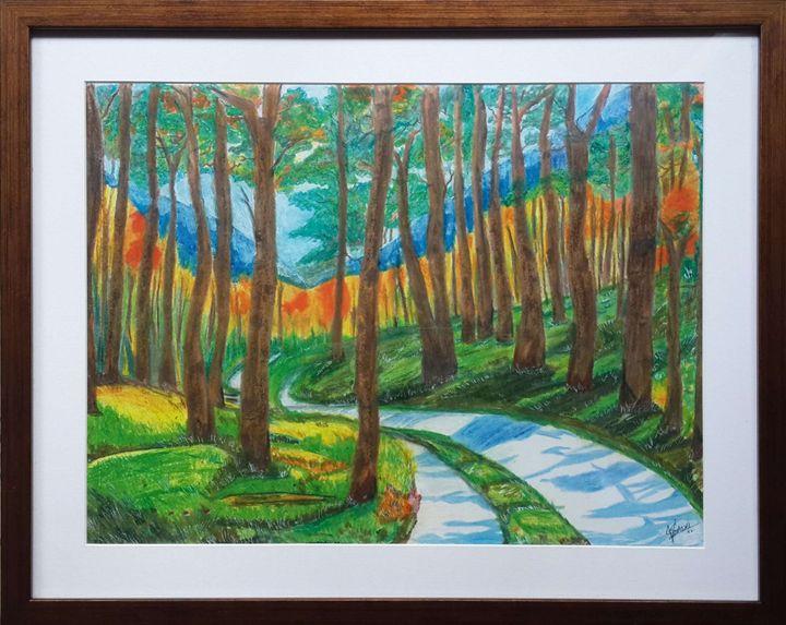 A Walk In The Woods - Vaibhav Salvi