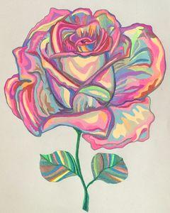 Peace Rose - Carrie Chaplin