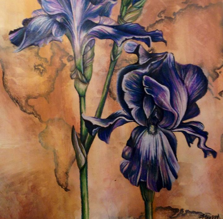 Iris - Amy Henkel