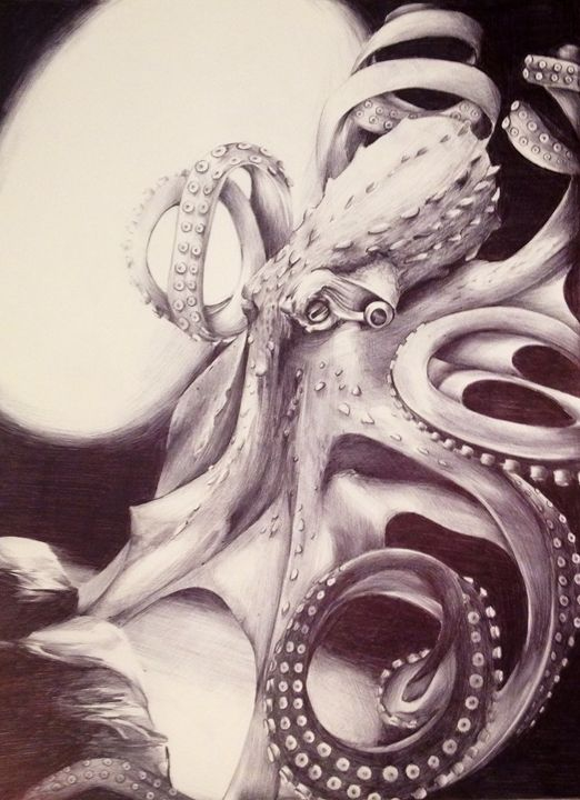 Octopus - Amy Henkel