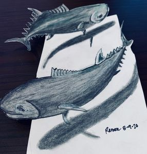Fish on 3D paper - Monvis