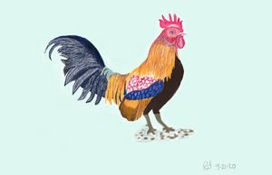 Rooster - Monvis