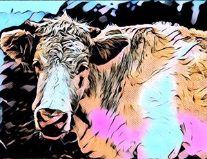 Mooo - Cow Modern Pop Art