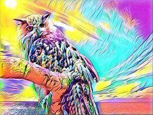 Owl Pop Art Style