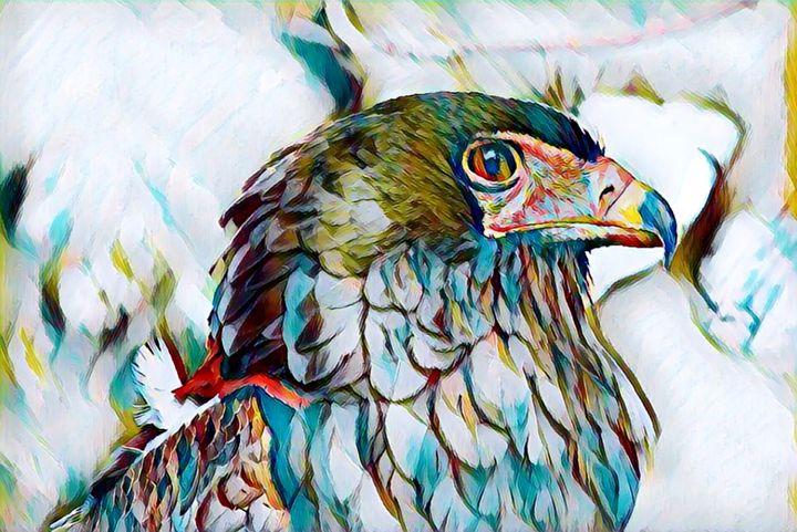 The Eagle - Rogue Art
