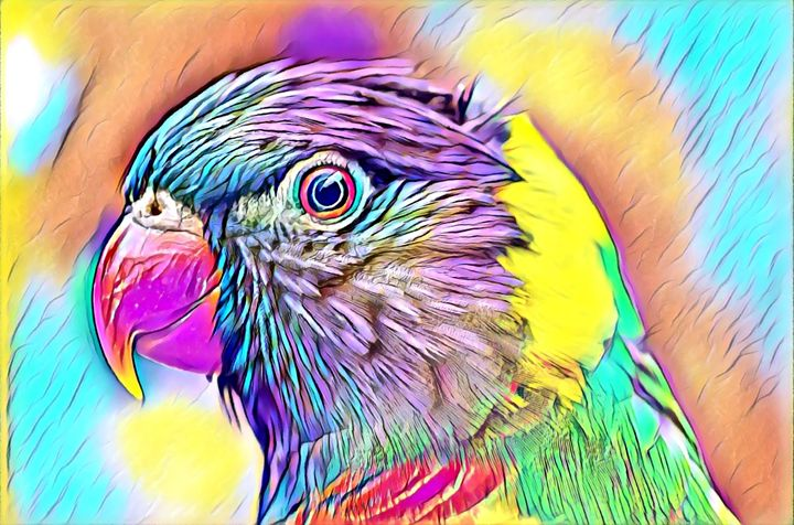 Pretty Colored Parrot - Rogue Art