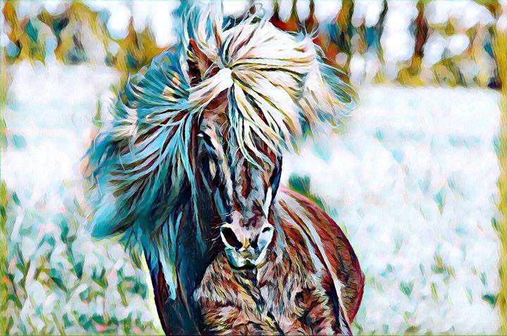 Pony - Rogue Art