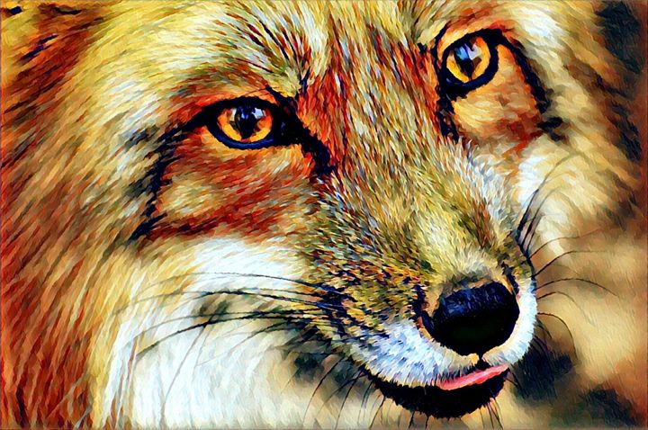 Red Fox Portrait - Rogue Art