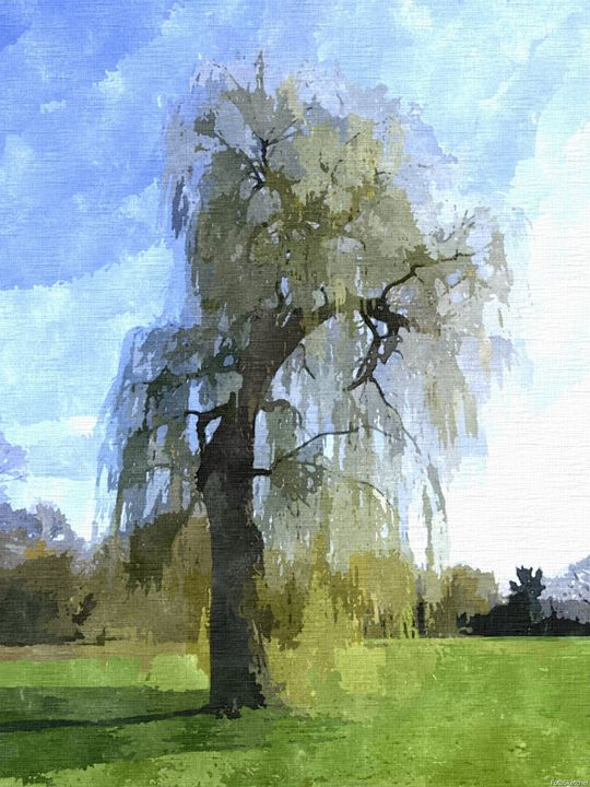 The Willow Tree Landscape - Rogue Art