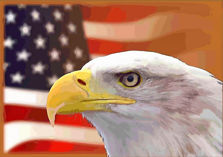 USA Flag and Eagle - Rogue Art