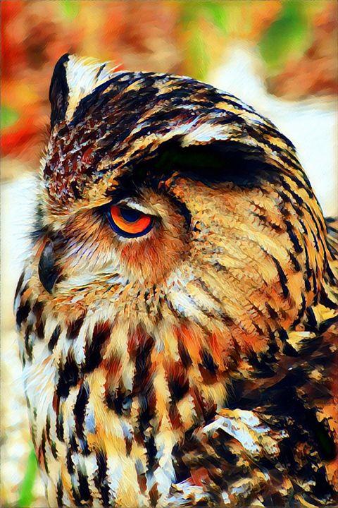 Owl Portrait - Rogue Art