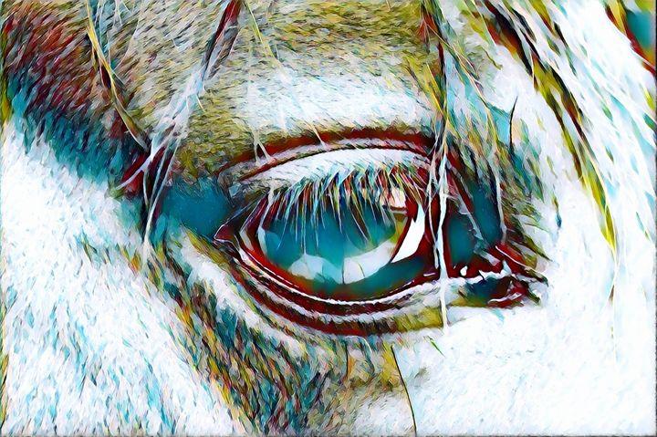 White Horse Eye - Rogue Art - Rogue Art