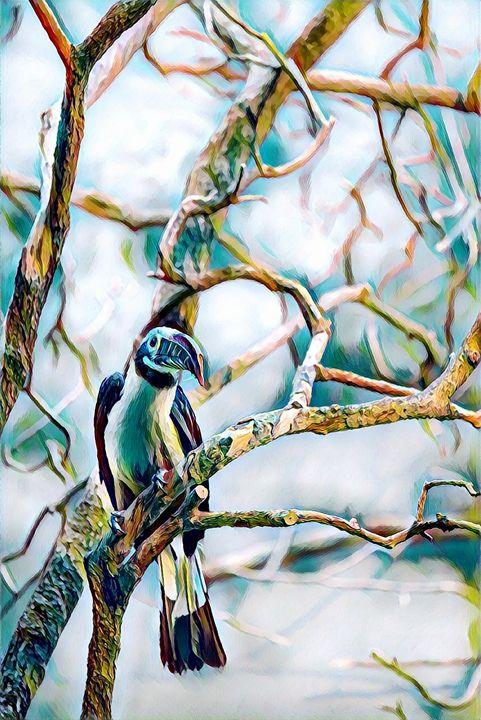 Bird On Branch - Rogue Art
