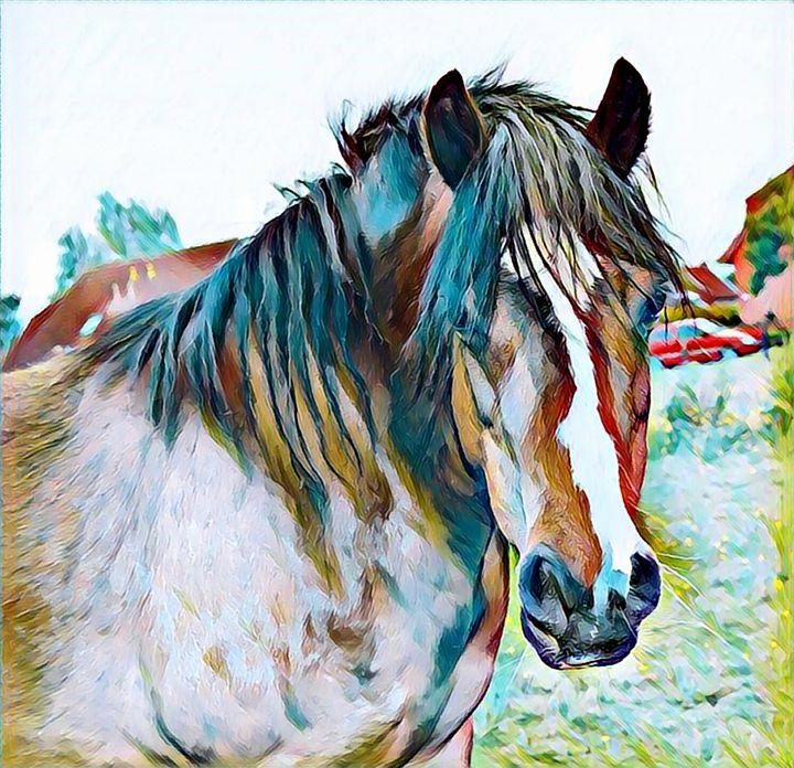 Horse Wild Animal Art Print - Rogue Art