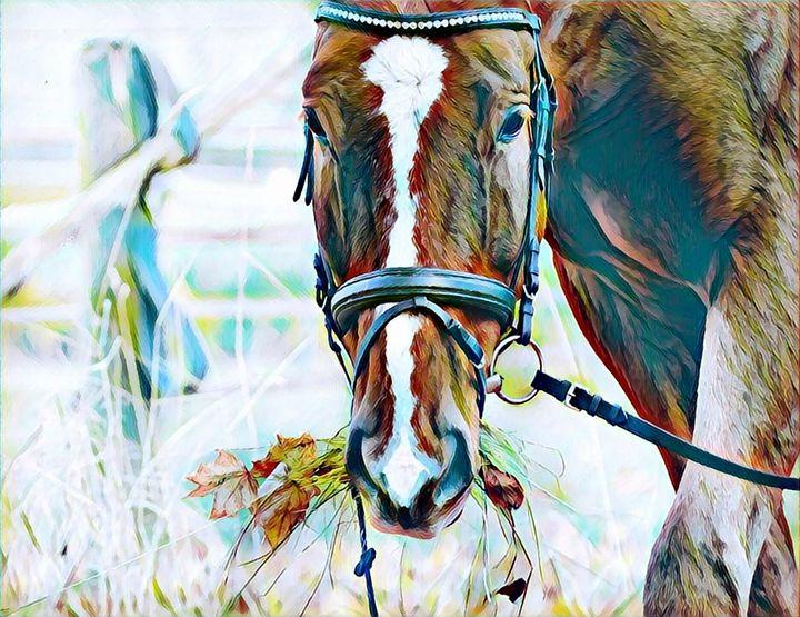 Grazing Horse Print - Rogue Art