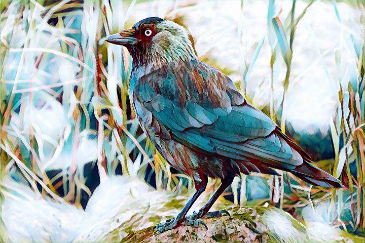 Bird - Rogue Art Prints - Rogue Art