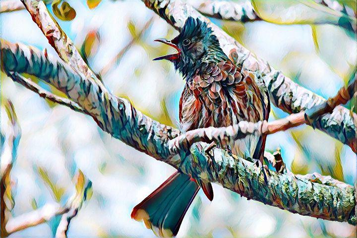 Bird - Rogue Art - Rogue Art