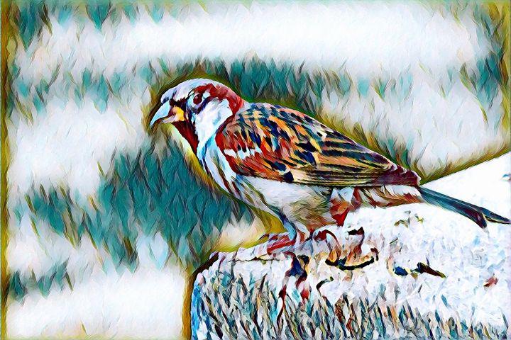 Bird Wildlife Portrait - Rogue Art