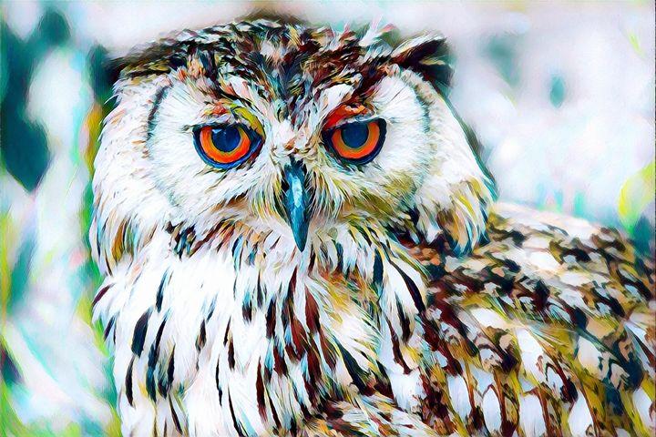 The Owl - Rogue Art