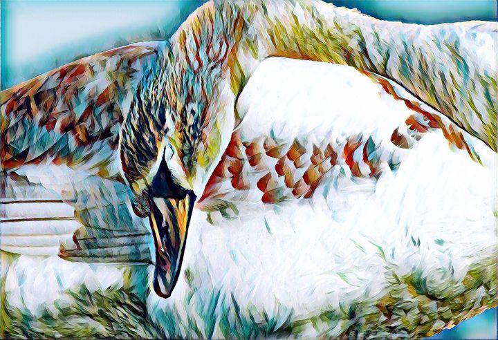 The Swan - Rogue Art