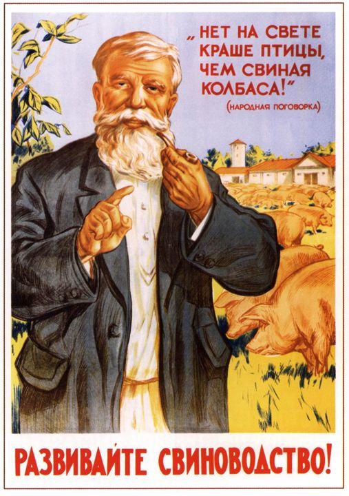 Develop the pig-keeping! - Soviet Art